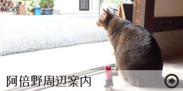 阿倍野昭和町のカフェや雑貨店などの情報ページ