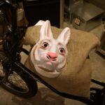 昭和町界隈は自転車があるとやっぱり便利、3年ぶりに自転車を買いました